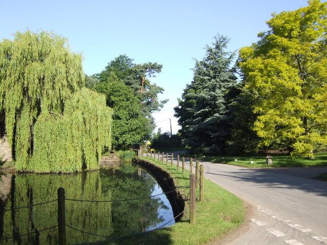 Fine treescape at Bollitree