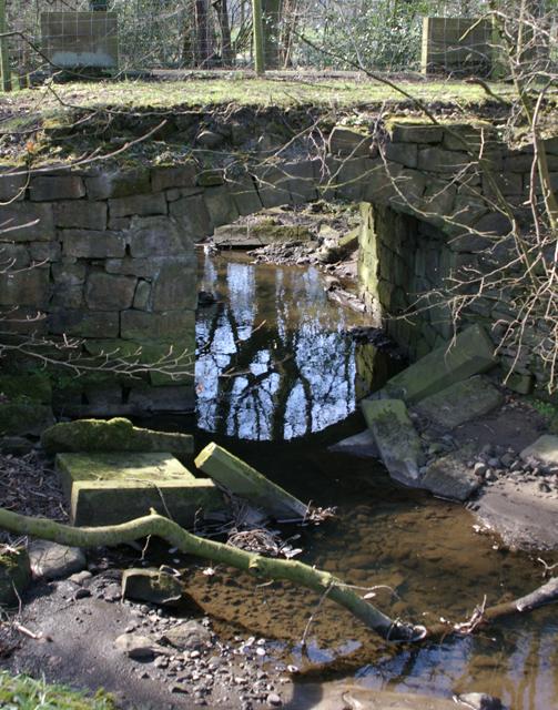 Arley Brook