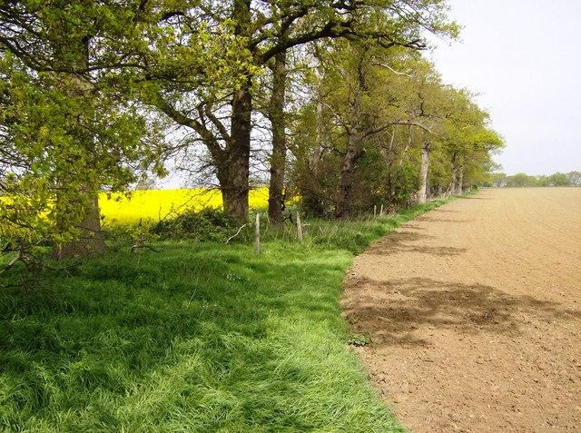 Farmland near Greatford