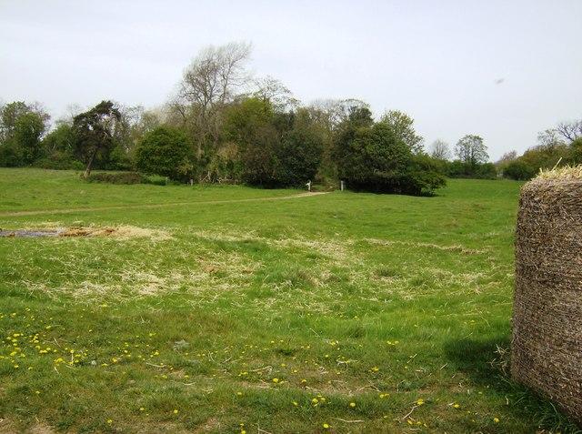 Site of Shillingthorpe Park