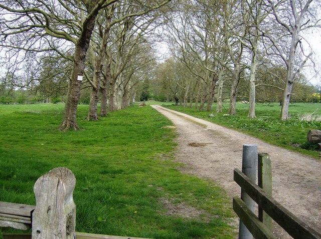 Entrance drive to Shillingthorpe Park