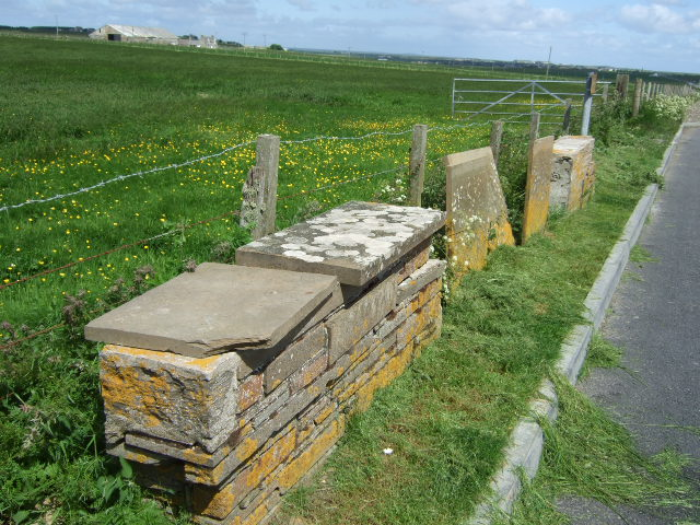 Examples of Caithness flagstone walling