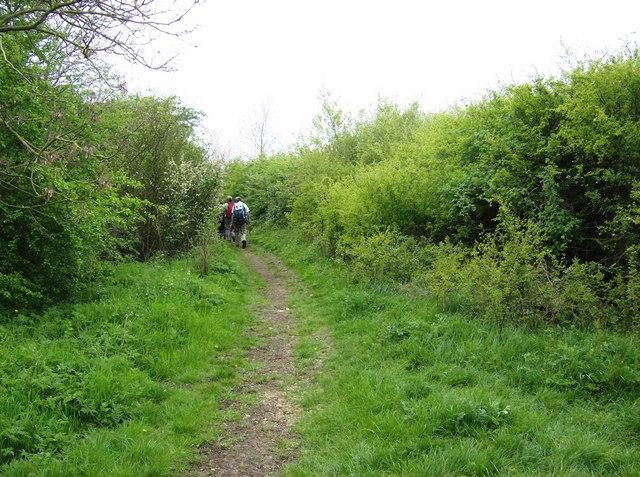 Bridleway towards Cobbs Nook Farm