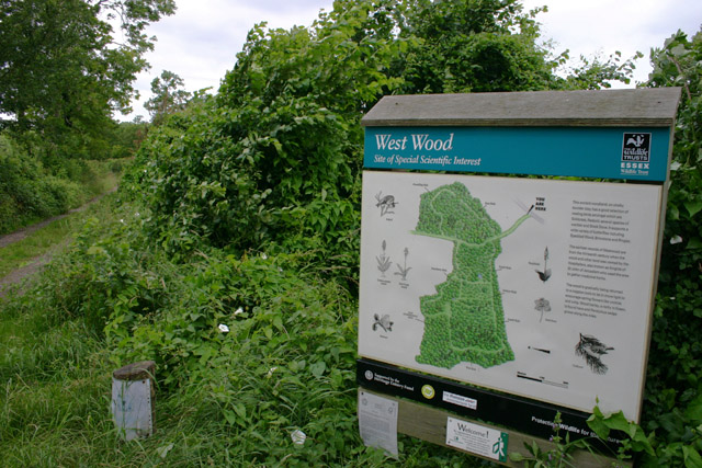 Information board for West Wood
