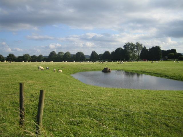 Farmland, Vicarage Barn
