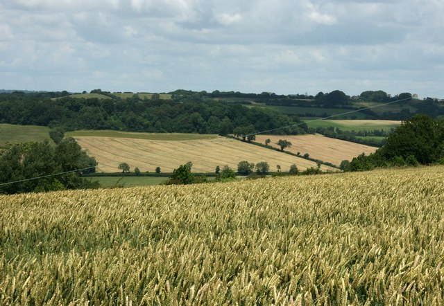 2007 : Farmland between Wellow and Dunkerton