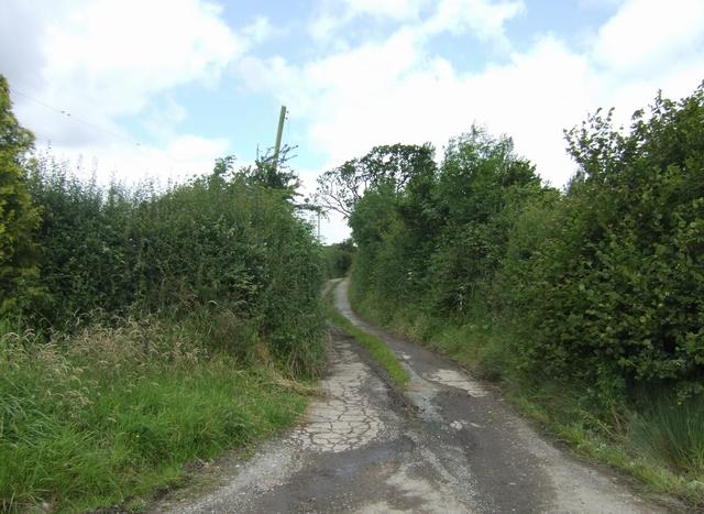 Track to 'The Grove Farm'