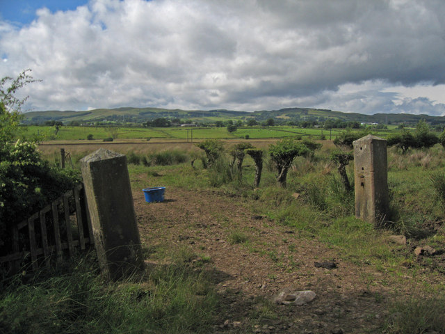 Old Posts No Gate