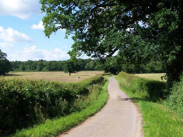 Lane near East Tytherley