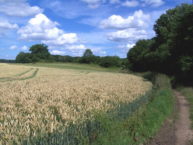 Field path from East Tytherley towards Bentley farms