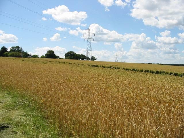 View W across fields near Hoades Court