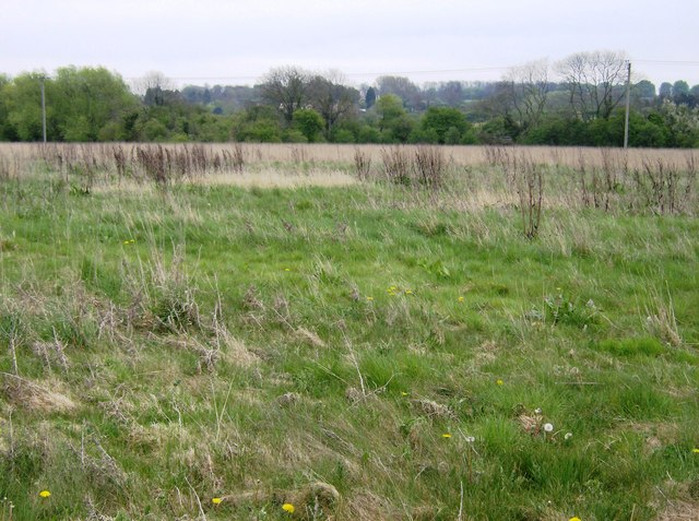Pasture near River Welland