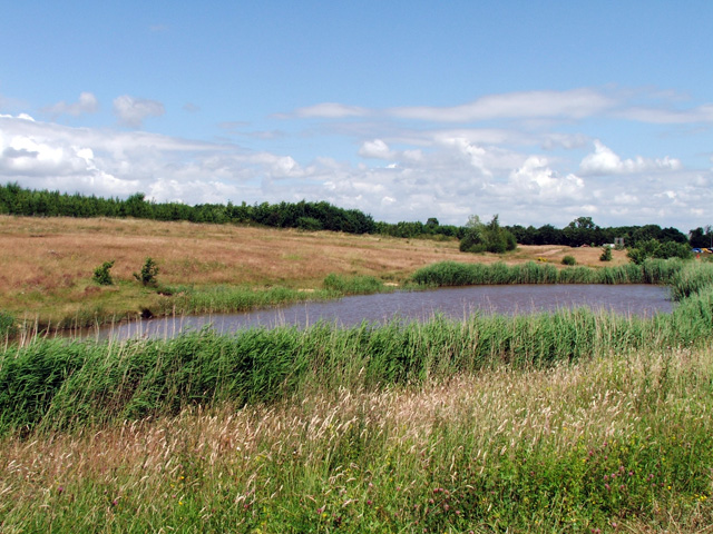 Pond on reclaimed land, Shirebrook