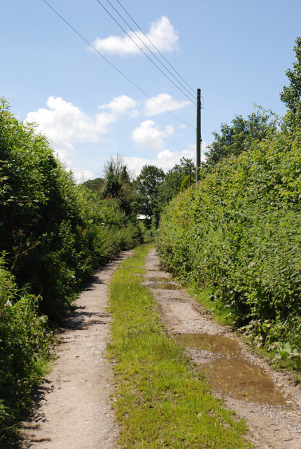 Track to Spring Farm