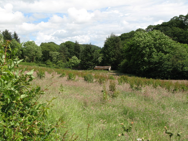 Meadow, old barn and wood near Ramshaws Mill