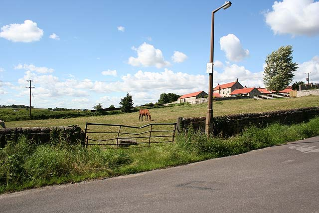 Horse paddock, Loversall