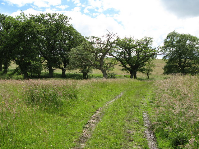 The track from Ramshaws Mill to Low Moralee Farm
