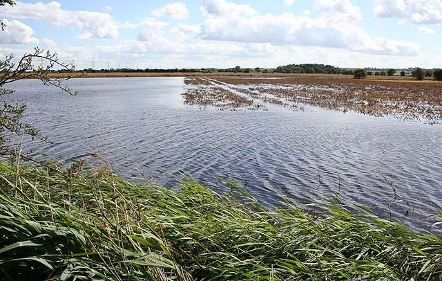 Flooded farmland, Little Moor