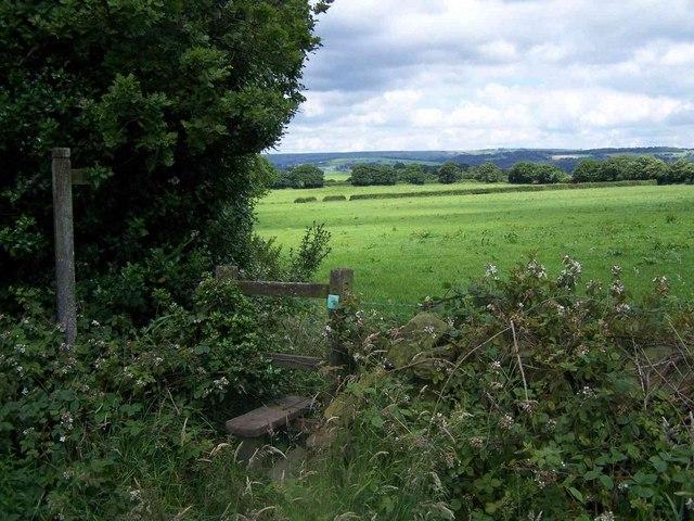 Stile Near Wetley Rocks