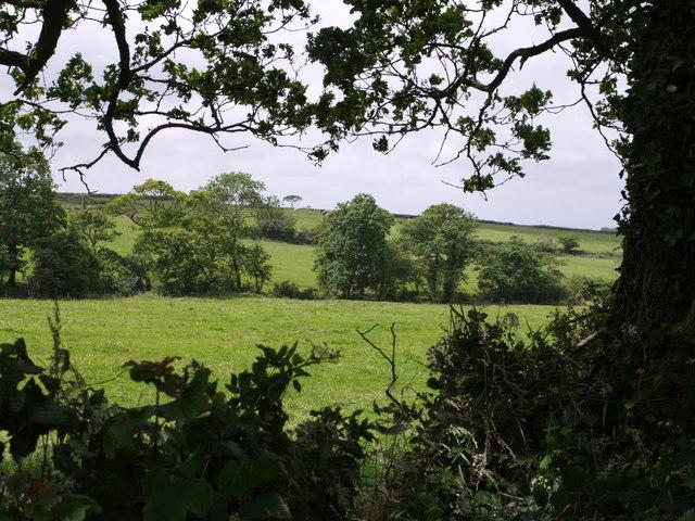 Near Henderbarrow Farm
