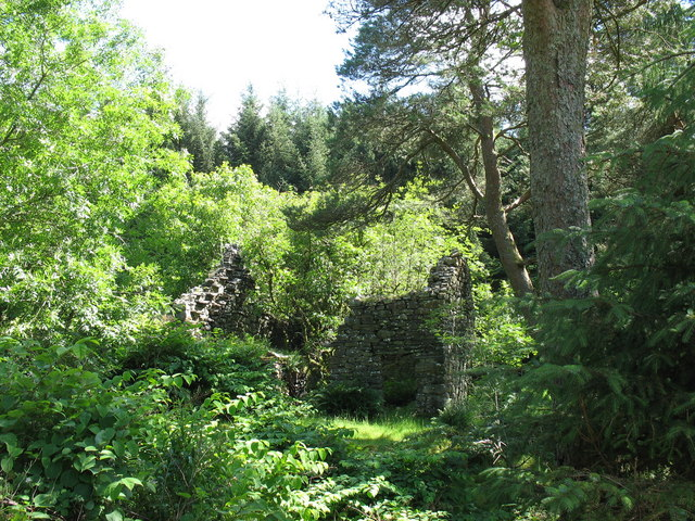The ruins of Hafodty-bach