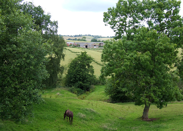 Grazing Land near  Spoonhill, Shropshire