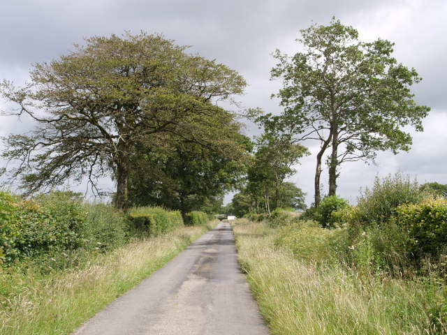 Lane east of Halwill Junction