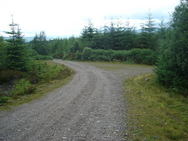 Junction of tracks in Fearnoch Forest east of Creag Ruisgte