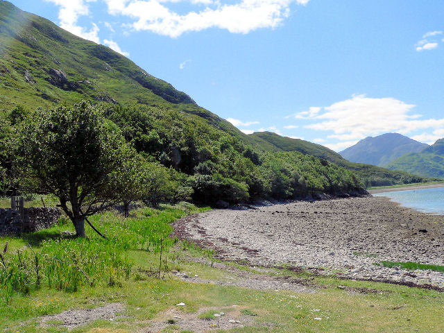 Steep drop to the shoreline of Loch Hourn