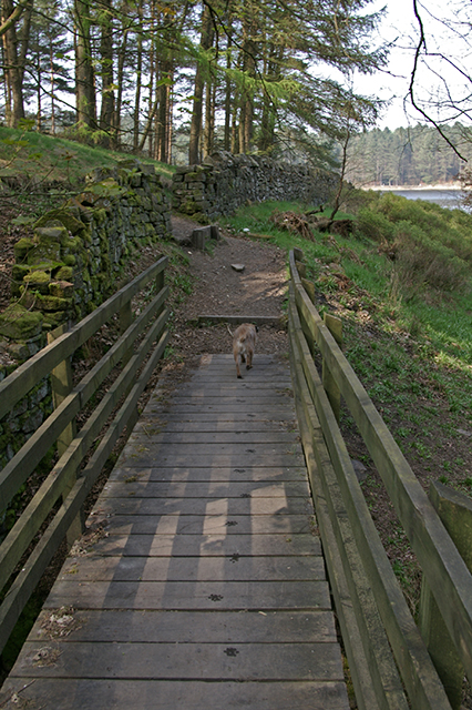 Bridge over Little Moor Clough