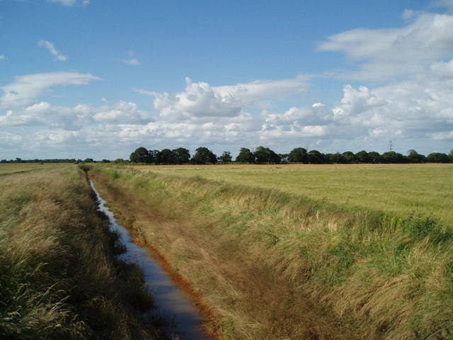 Dyke towards Adlingfleet Drain at Willowbank