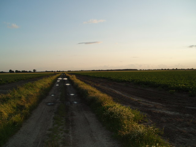Track southwest of Haldenby Ness