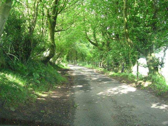 Coch-y-north Road