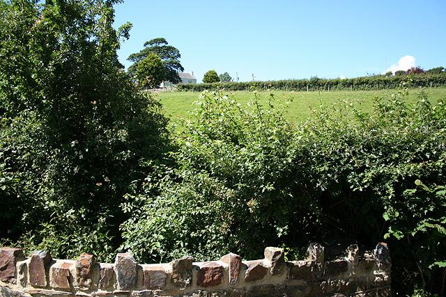 Tawstock: towards Hillside