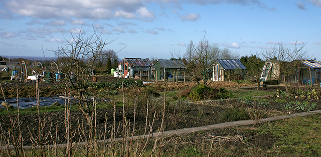 Revidge Allotments