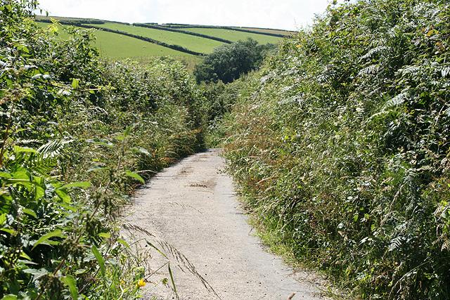 Tawstock: lane to Sideham