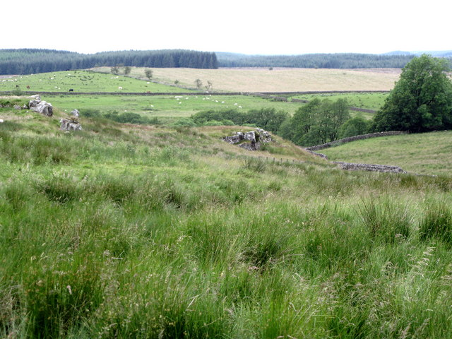 The Pennine Way below crags near Leadgate