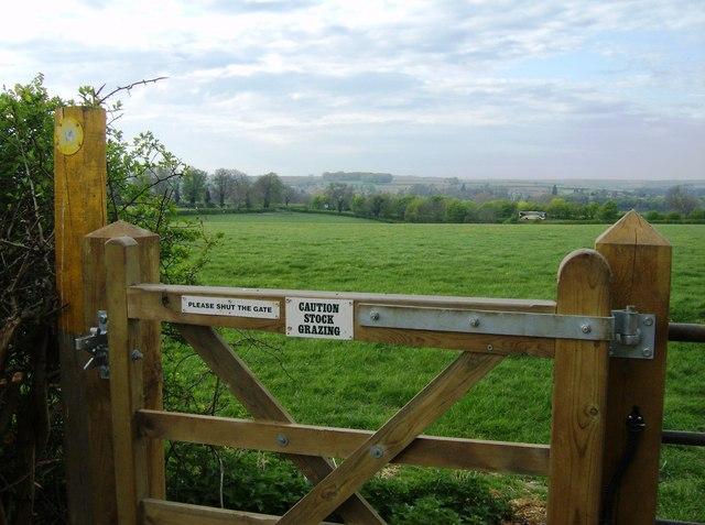 Grazing land above Empingham