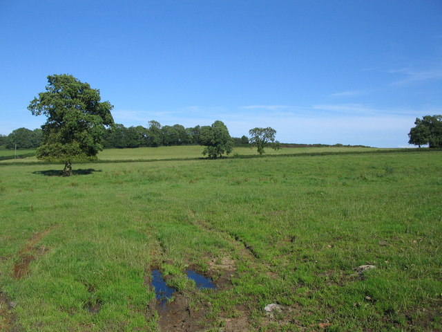 Farmland near Wanstrow