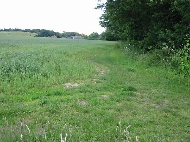 View along field margin near Millbank