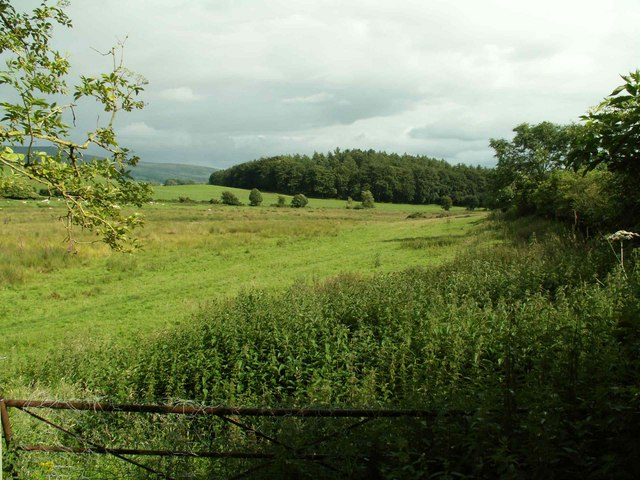 Bridleway from Stonebridge Lees