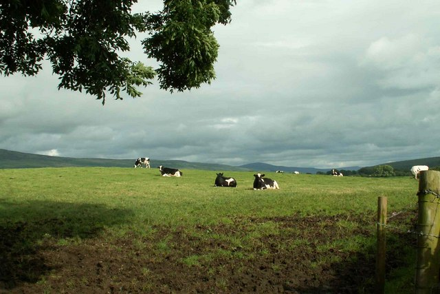 Field and Fells