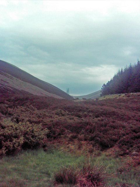 Up the Glen