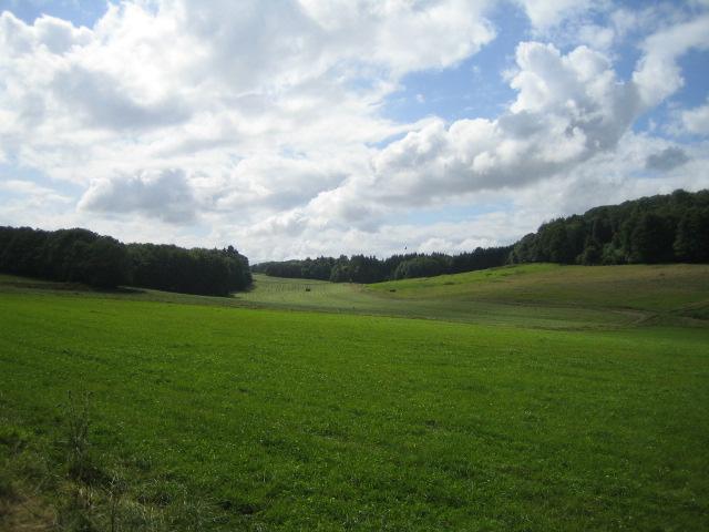 Farmland and woods near Home Farm