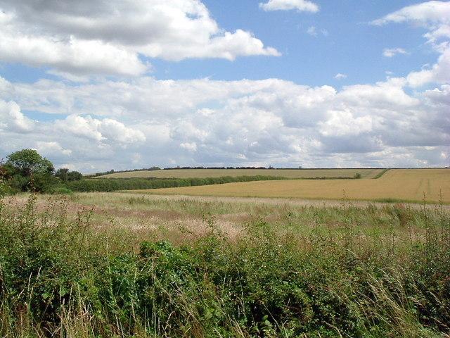 Fields near Chain bridge