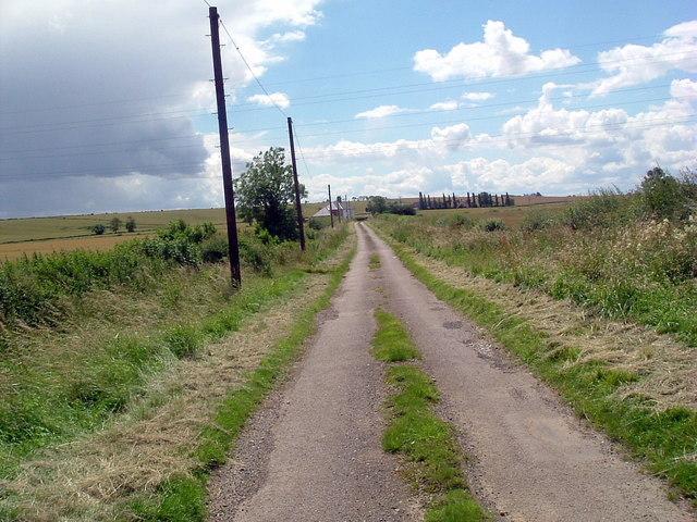Road to Molesworth lodge farm