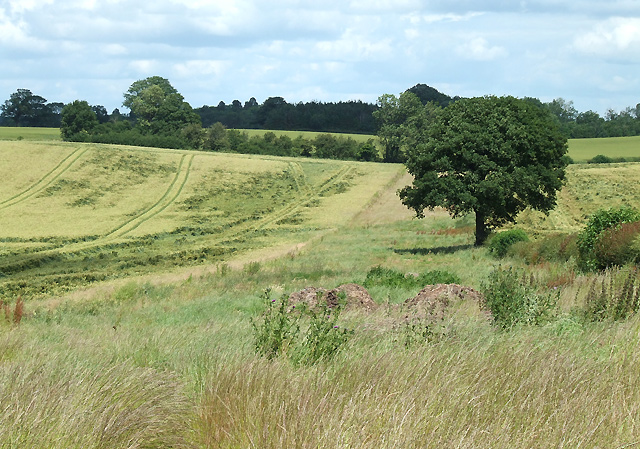 Fields near Weston, Shropshire