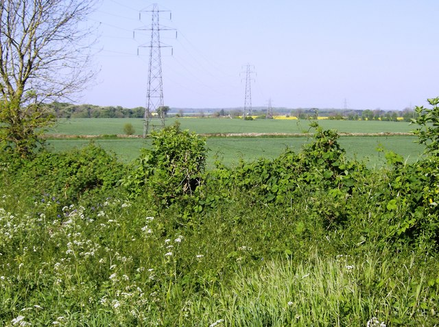 Pylons north of Chavenage