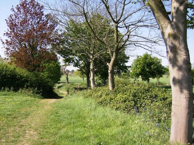 Macmillan Way near Beverston