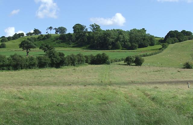 Grazing Land near Aston Eyre, Shropshire